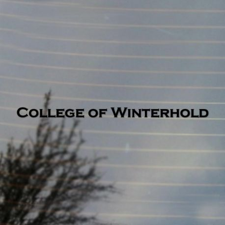 College of Winterhold Large Vinyl Decal Sticker (FREE US Shipping) (For car, wall, window etc)