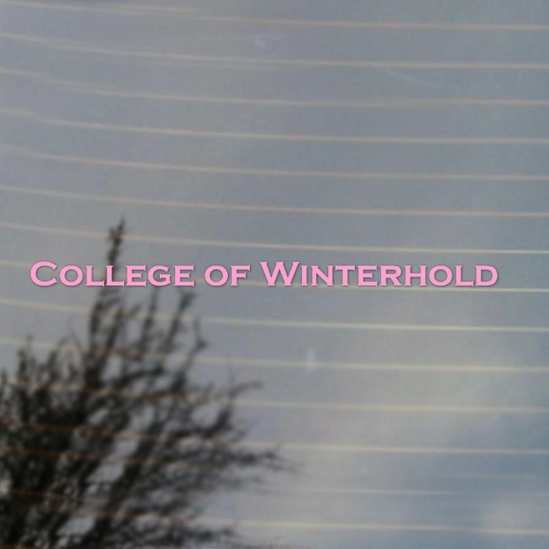 College of Winterhold Large Vinyl Decal Sticker (FREE US Shipping
