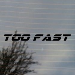 Too Fast Car Racing Vinyl Decal