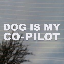 Dog is my Co-pilot Comedy Vinyl Decal