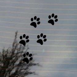 Cat Paws Pet Lover Vinyl Decal
