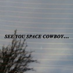 See You Space Cowboy... Anime Vinyl Decal Sticker (FREE US Shipping) (For car, laptop, tablets etc)