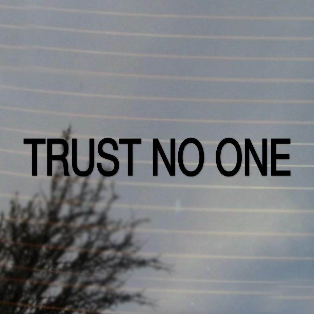 Trust No One Science Fiction Vinyl Decal Sticker (FREE US