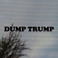 Dump Trump Political Vinyl Decal (FREE US Shipping) (For car, laptop, tablets etc)