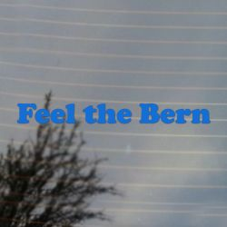 Feel The Bern Political Vinyl Decal (FREE US Shipping) (For car, laptop, tablets etc)